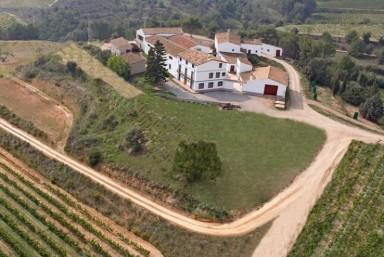 1. Curso de Viticultura, Enología y Cata