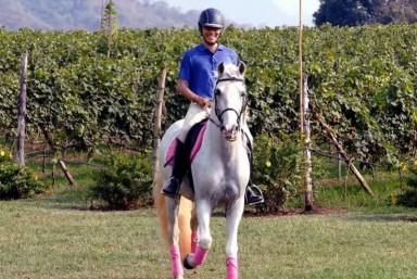 4. Visita enológica a caballo