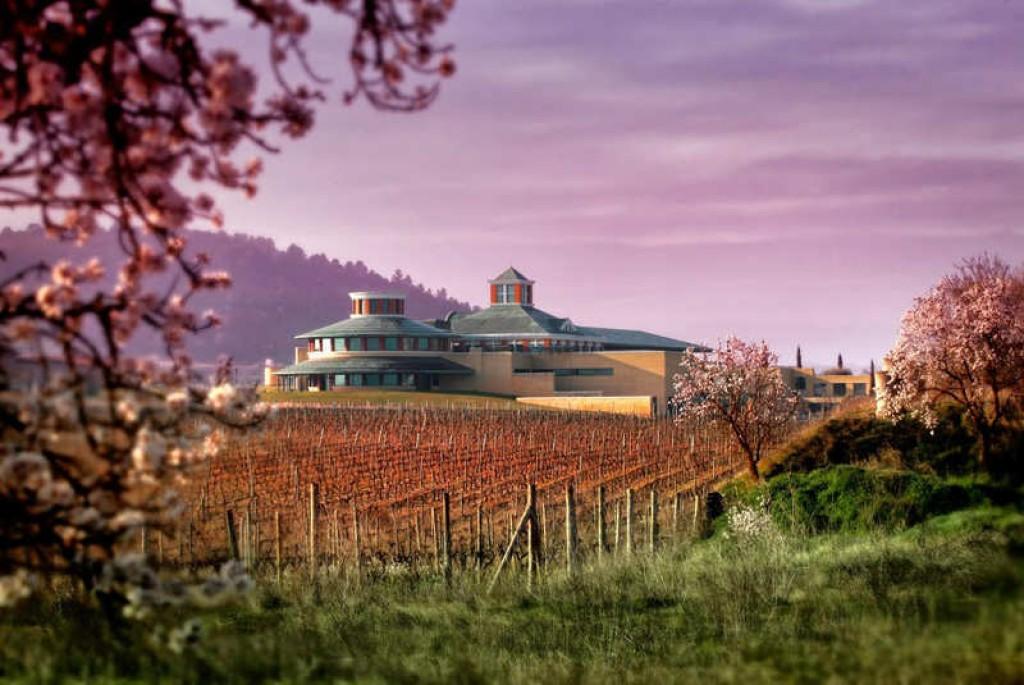 curso de cata La Rioja