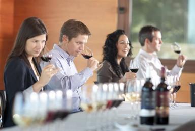4. Cata de vinos + Comida