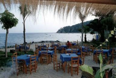 2. Visita a Cava + Comida en Restaurante.