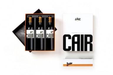 2. Visita Cair