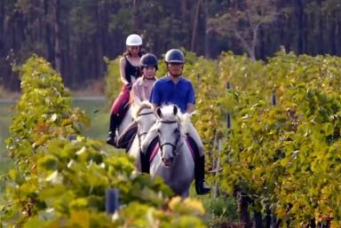 4. A Caballo entre Viñas