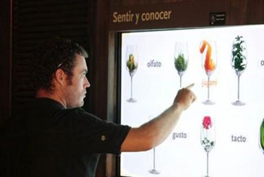 3. Visita Bodega y Museo + Degustación de 2 vinos + Curso de iniciación a la cata